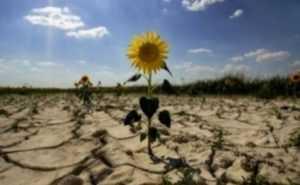 Испания и Португалия страдают от засухи