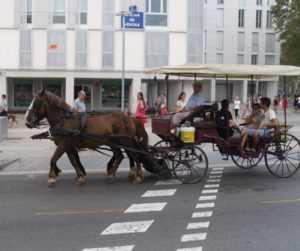 В Барселоне собираются запретить передвижение конных повозок
