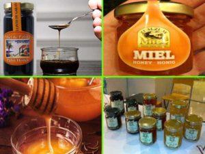 Мёд на Тенерифе